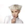 Fehér haj készítő hajfesték és szőkítőpor szett Maxima1
